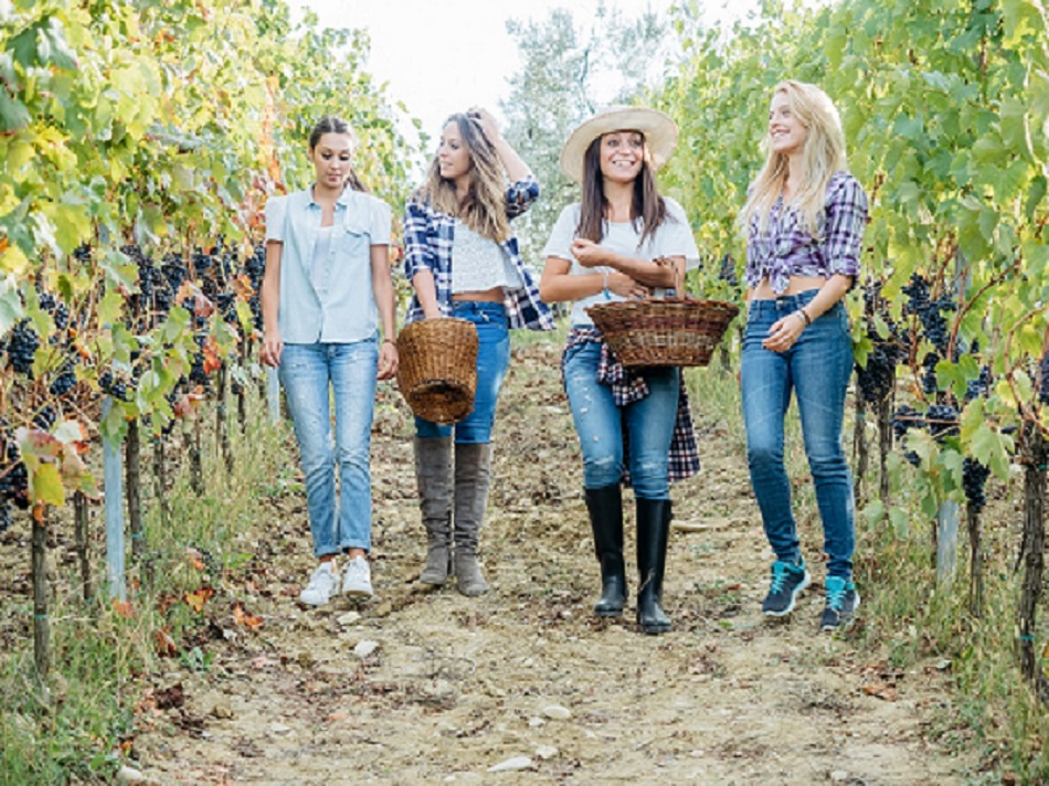 Ladies weekend in wine country